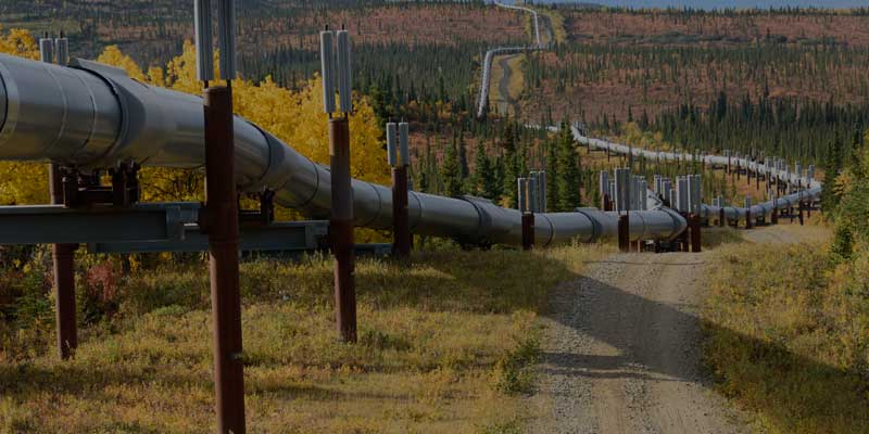 Oil Pipeline Network Design: Finding Bottlenecks and Choosing the Right Policies